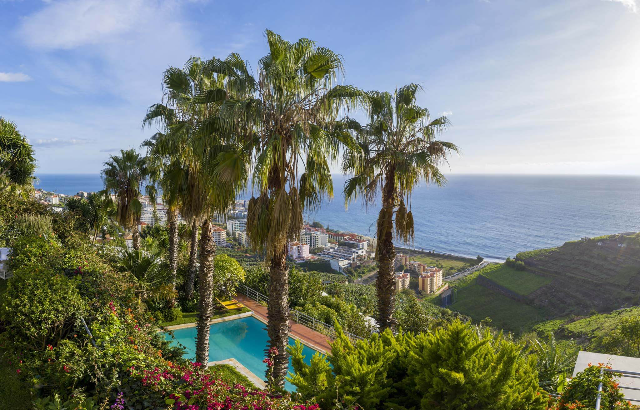 Casa do Papagaio Verde Bed & Breakfast in Madeira Island offers fruits and vegetables from our land
